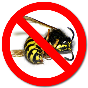 wasp - Areas Covered for Wasp Nest Removal